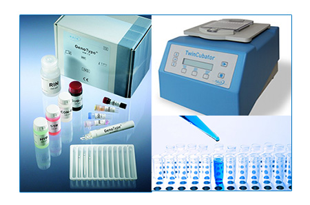 Hain Line Probe Assay