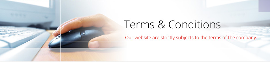 terms and conditions banner